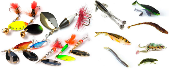 О ловле окуня по временам года, Советы о рыбалке - как и где ловить рыбу