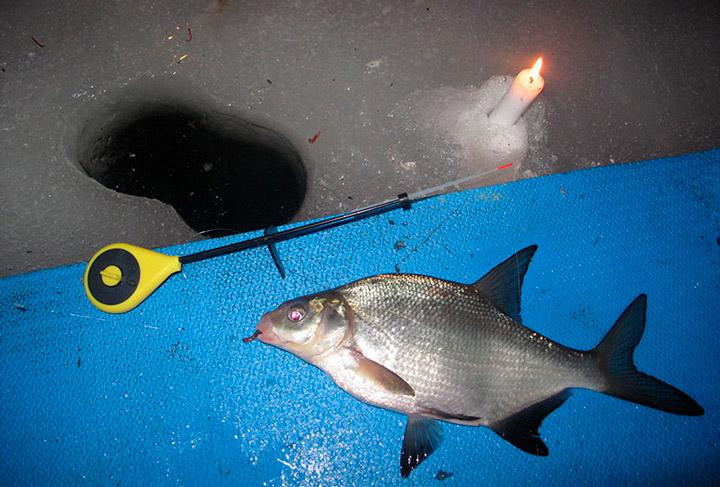 Подготовка к ночной ловле леща зимой в проруби