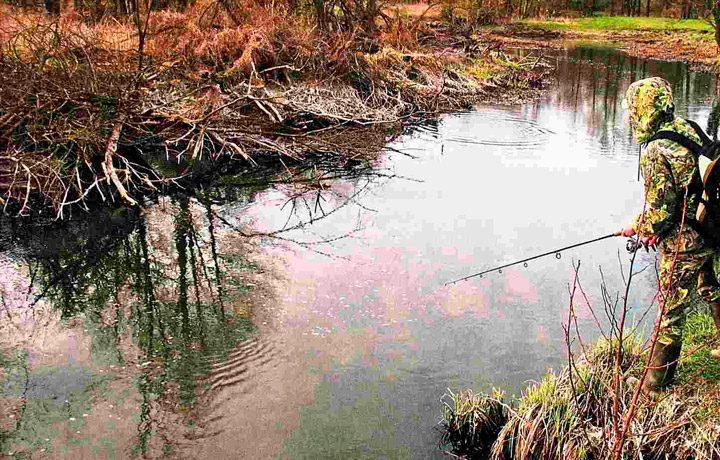 Ловля на небольших озерах
