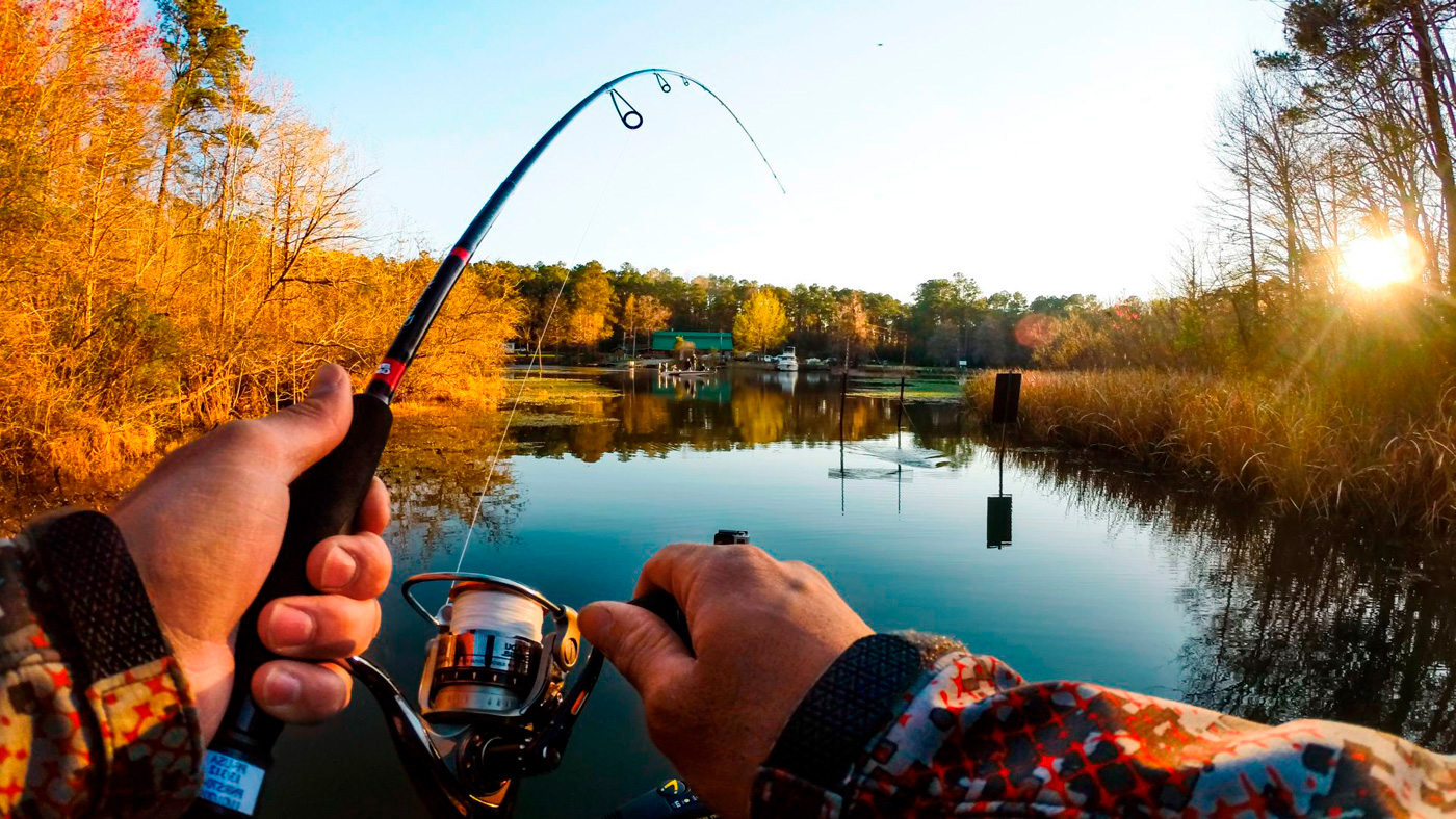 поздравляя картинки на телефон про рыбалку последовательность