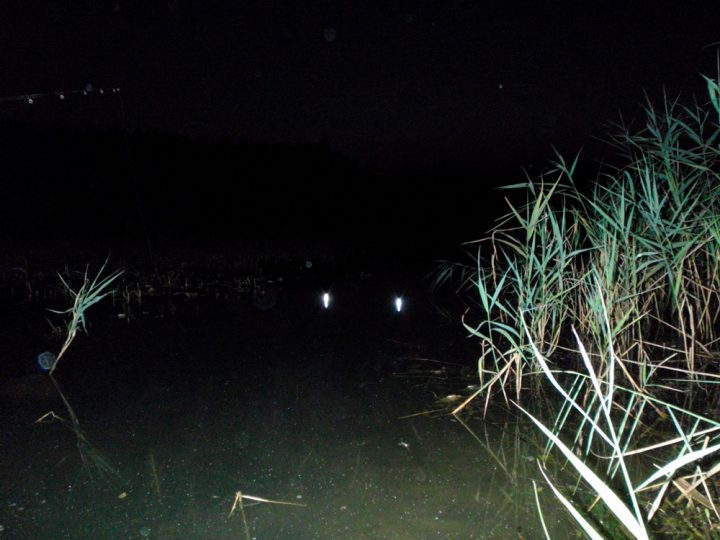 Снасть светлячок для рыбалки