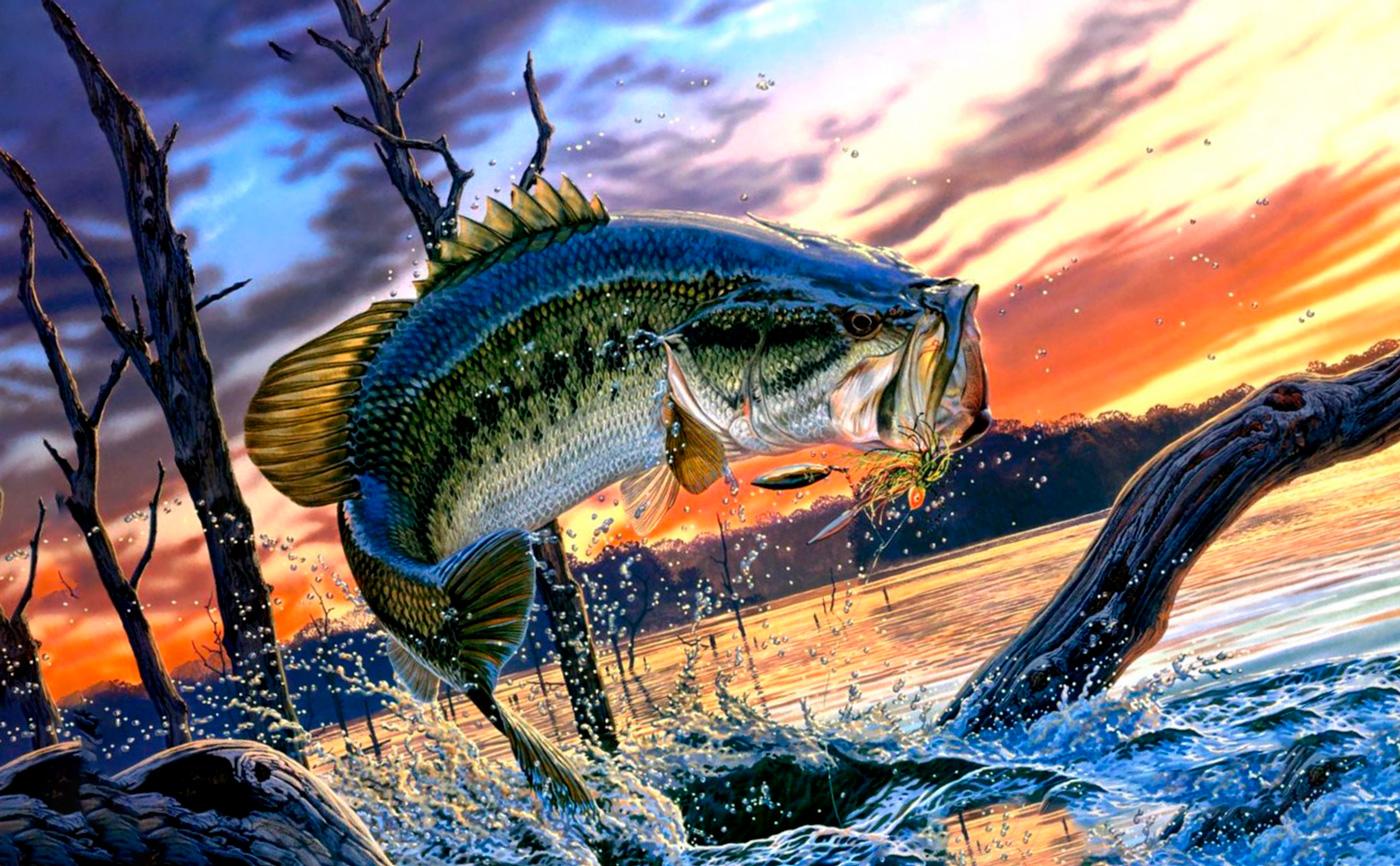 Особенности октябрьской рыбалки